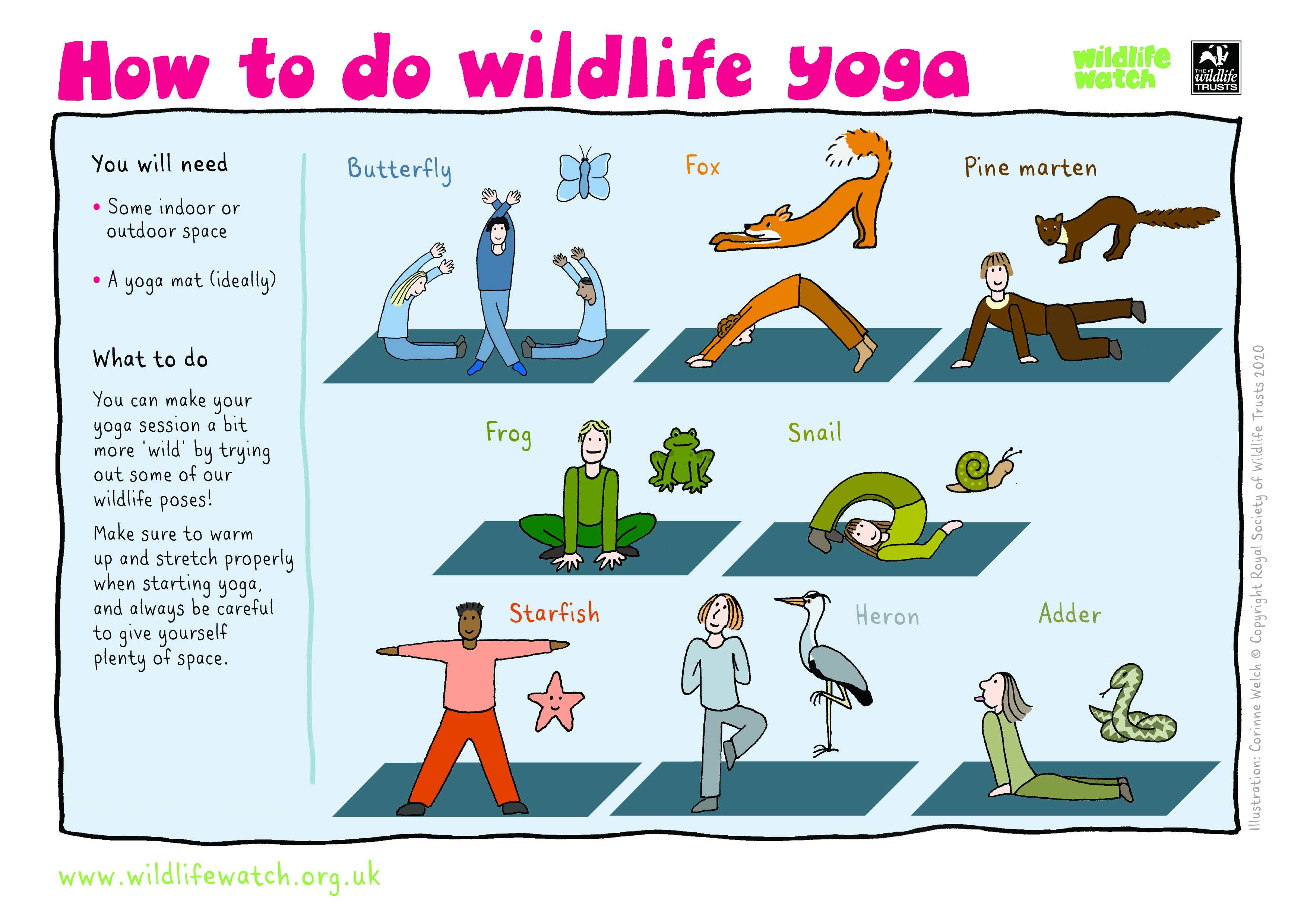Can you stretch like a butterfly, lie like a snake or crouch like a frog?